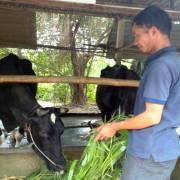Bộ Nông nghiệp sẽ hỗ trợ nhân lực có trình độ cho hợp tác xã