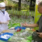 Ưu tiên chính sách cho nông nghiệp hữu cơ
