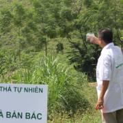 Nguyễn Phi Vân: 6 xu hướng lớn của ngành thực phẩm và dinh dưỡng