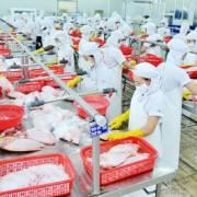 Doanh nghiệp Việt có nguy cơ bị loại khỏi thị trường Mỹ