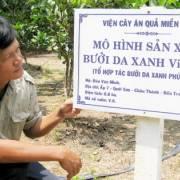Phát triển vườn cây VietGAP ở ĐBSCL còn nhiều gian nan