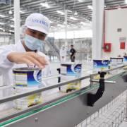 SCIC chuẩn bị bán tiếp 3,33% vốn điều lệ Vinamilk
