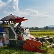 Ngày càng ít người làm nghề nông