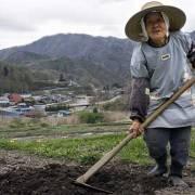 'Tại sao bản địa lại quan trọng?' – một chia sẻ kinh nghiệm từ Nhật Bản