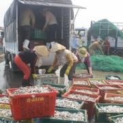 Vụ Formosa: đã chi trả hơn 6.000 tỷ đồng bồi thường cho người dân 4 tỉnh miền Trung