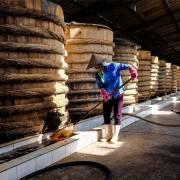 Vũ Thế Thành: Nước mắm truyền thống mắc đoạ vì histamine