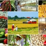 Thủ tướng phê duyệt kế hoạch cơ cấu lại ngành nông nghiệp