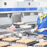Nông nghiệp công nghệ cao vẫn đói vốn