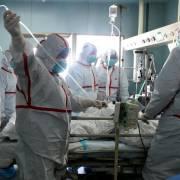 Cảnh báo cúm gia cầm lan tràn ở châu Á