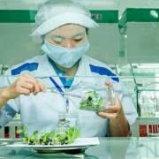 Thiếu hụt nhân lực nông nghiệp công nghệ cao