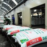VCCI cảnh báo điều kiện sản xuất phân bón sẽ làm khó doanh nghiệp