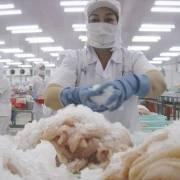 Thận trọng khi mở rộng xuất khẩu cá tra vào thị trường Trung Quốc