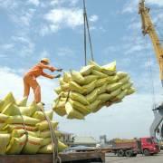 Hải Phòng 'hạ nhiệt' cho phí hạ tầng cảng biển