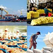 Nhiều cơ hội xuất khẩu sang thị trường châu Phi – Trung Đông