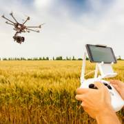 10 xu hướng nông nghiệp công nghệ cao ở Ấn Độ