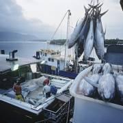 Chương trình an toàn thuỷ hải sản nhập khẩu