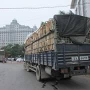 Từ 1/4, rau củ quả Việt Nam xuất sang Trung Quốc phải có nhãn mác xuất xứ
