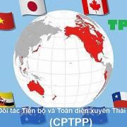 CPTPP và những quan ngại trước giờ G