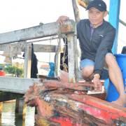 Tàu cá liên tục bị tàu lạ đâm va, cướp phá trên vùng biển gần Hoàng Sa