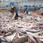 Việt Nam đề nghị Mỹ công bằng trong áp thuế nhập khẩu