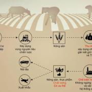 Chuỗi giá trị nông sản: hạn chế ở mọi khâu