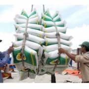 Rộng cửa xuất khẩu cho hạt gạo Việt Nam