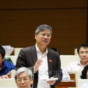 ĐBQH đề nghị Phó thủ tướng làm rõ hiệu quả kinh tế khi phát triển đặc khu