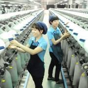 Doanh nghiệp Việt đang bỏ quên thị trường đầy tiềm năng – Trung Đông