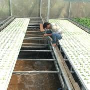 Đất sản xuất nông nghiệp: người cần không có, người có thì làm khó