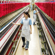 Xây dựng nhà máy kéo sợi len lông cừu tại Đà Lạt