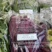 8 bước để nhà nông đạt chứng nhận tiêu chuẩn hữu cơ PGS