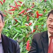 Thaco cam kết sẽ tái cơ cấu khoản nợ 14.000 tỷ đồng nợ của HAGL