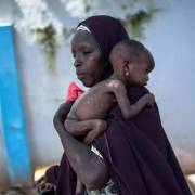 FAO cần 120 triệu USD để cứu đói cho 3,6 triệu dân trên thế giới