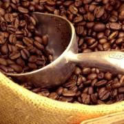 Brazil dự báo sản lượng cà phê cao kỷ lục trong năm 2018