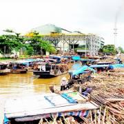 Nhiều nhà máy đường chờ… phá sản