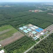 TP.HCM: Sẽ công khai việc chuyển đổi 26.000 ha đất nông nghiệp