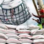 Philippines cho phép nhập khẩu gạo theo hướng mở cửa