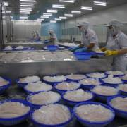 Xuất khẩu cá tra vào thị trường Trung Quốc ước tăng 2 con số