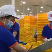 [Video]: Doanh nghiệp Việt làm sao để tiếp cận thị trường Hồi giáo?