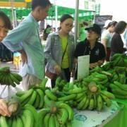 Ba khúc mắc khiến nông sản Việt khó ra thế giới