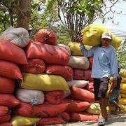 Tập đoàn gạo lớn nhất Australia thâu tóm nhà máy chế biến gạo của Việt Nam