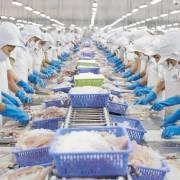 Xuất khẩu nông sản Việt đã đứng top 15 thế giới