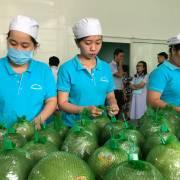Xuất khẩu nông thủy sản: Khi thị trường điên đảo