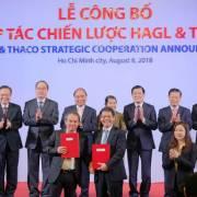 Bầu Đức làm gì với khoản tiền nghìn tỷ nhận của Thaco?