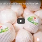 [Video] Trái cây đặc sản Việt Nam chinh phục thị trường Mỹ