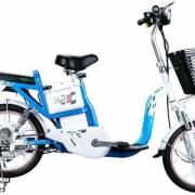 Xe đạp điện nước ngoài giả xuất xứ Việt Nam xuất sang châu Âu