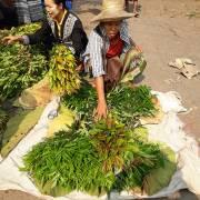 Đi xem người Miến Điện làm tiêu chuẩn an toàn thực phẩm