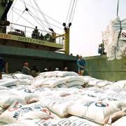 8.776 tấn gạo Việt Nam bị mắc kẹt ở Malaysia
