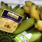 Bình luận thị trường: Giải mã khó khăn hàng rau quả Việt vào Trung Quốc