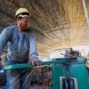 ADB sẽ giảm cho vay với các nước không còn cần hỗ trợ tài chính?